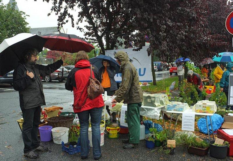 Pflanzenflohmarkt Seeheim 07