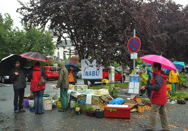 Pflanzenflohmarkt Seeheim 08