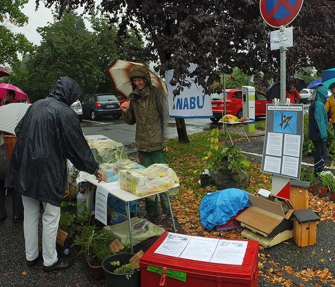 Pflanzenflohmarkt Seeheim 12