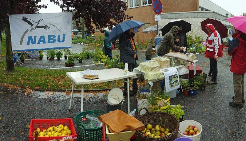 Pflanzenflohmarkt Seeheim 06