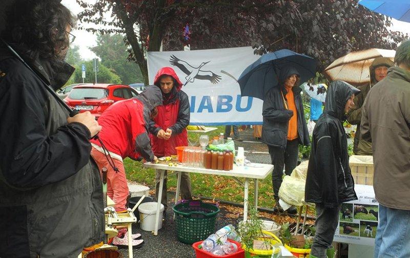 Wuehlmaeuse beim Pflanzenflohmarkt 05