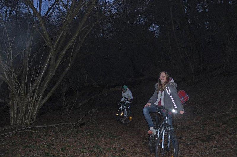 06 Waldweg am Erlensee