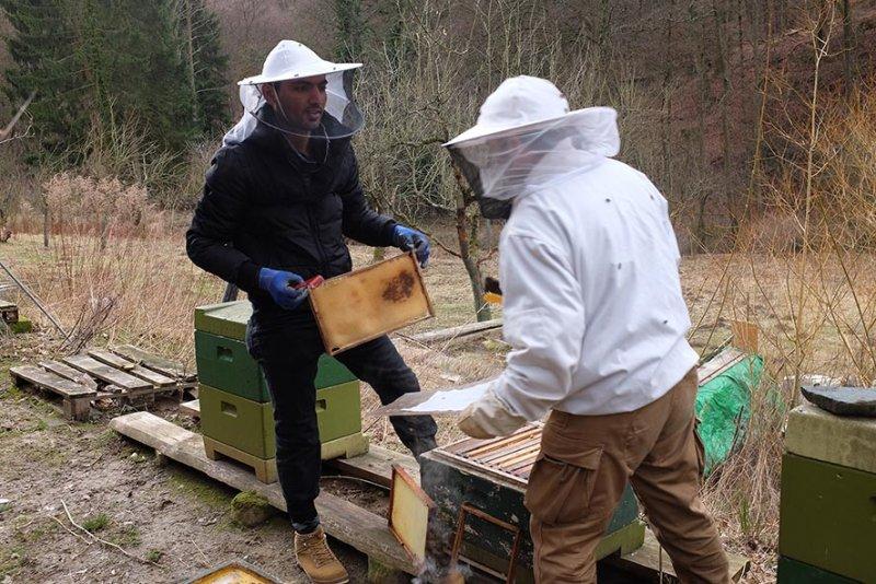 Frühjahrsputz am Bienenstand 1