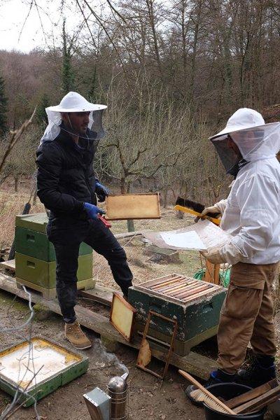 Frühjahrsputz am Bienenstand 2
