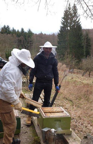 Frühjahrsputz am Bienenstand 3