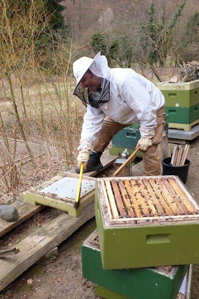 Frühjahrsputz am Bienenstand 4