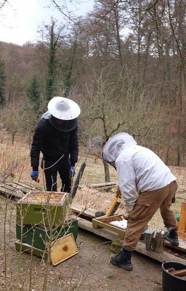 Frühjahrsputz am Bienenstand 5