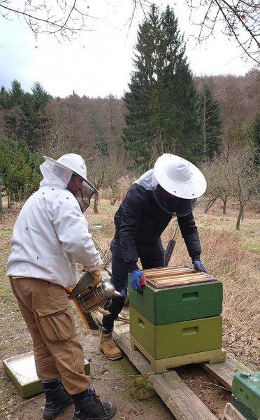 Frühjahrsputz am Bienenstand 8