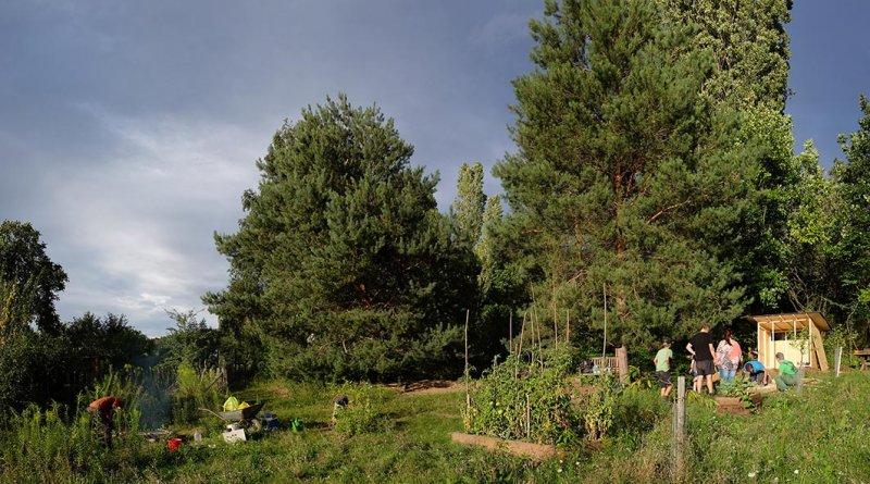 Werkzeughütte im Wühlmausgarten 5