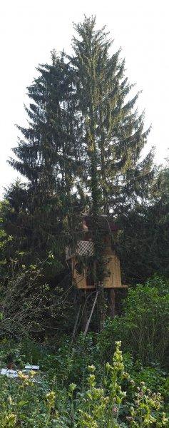 Baumhaus Etzwiesen 1 10x25s