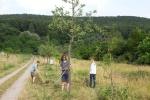 NABU Kirschgarten Mäheinsatz 08