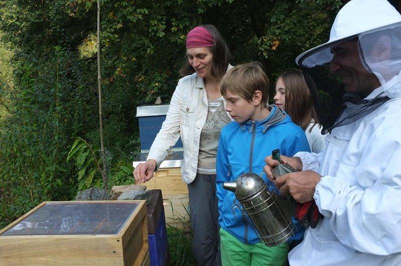 Bienenstand Etzwiesen 1
