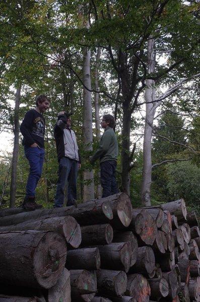 Achim auf dem Baumstapel