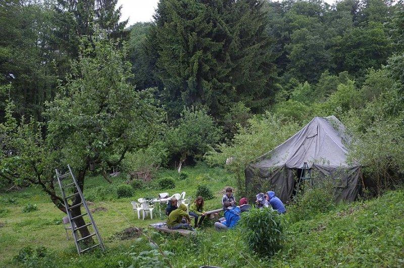 Sommerlager der Feuersalamander auf den Etzwiesen 1