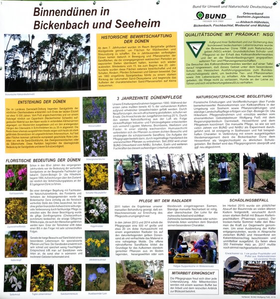 BUND Plakat zur Bickenbacher Düne 10x11