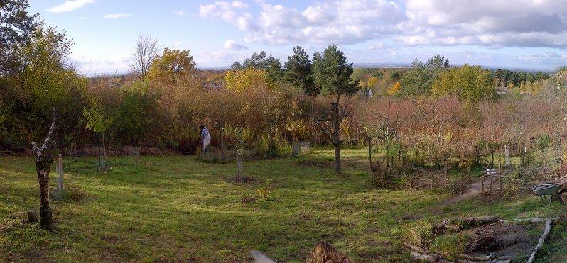 Teich im Wuehlmausgarten 06