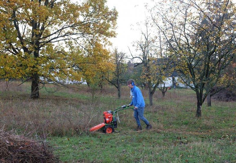 Aktionstag-Wühlmausgarten-Wiesenmahd-Bienenweide-03-10x15s