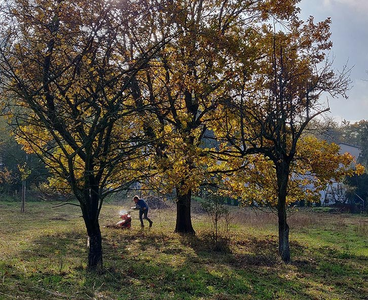Aktionstag-Wühlmausgarten-Wiesenmahd-Bienenweide-11-10x12s