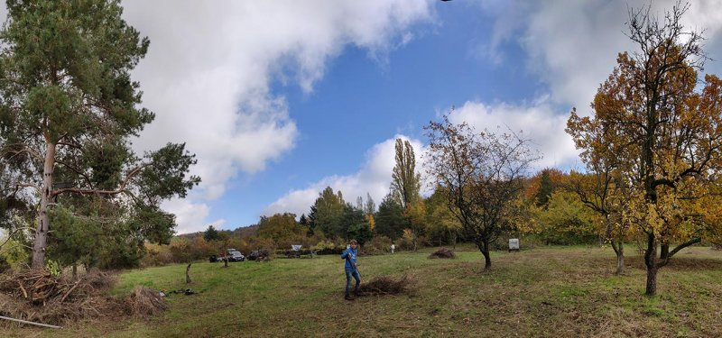 Aktionstag-Wühlmausgarten-Wiesenmahd-Bienenweide-22-10x21s