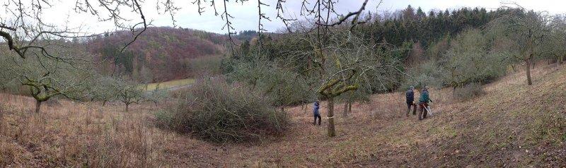 Streuobstwiese Nieder-Beerbach 25 10x34s