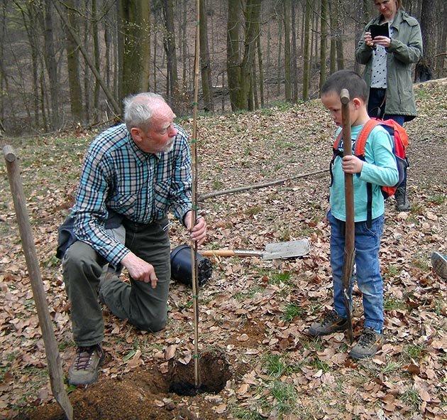 Einsatz Alsbacher Wald 4