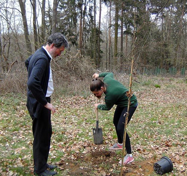 Einsatz Alsbacher Wald 5