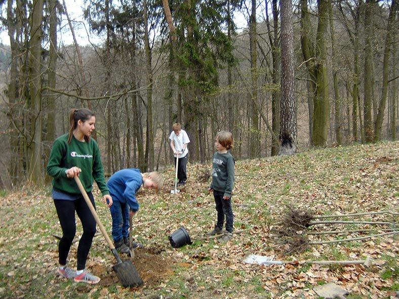 Einsatz Alsbacher Wald 7