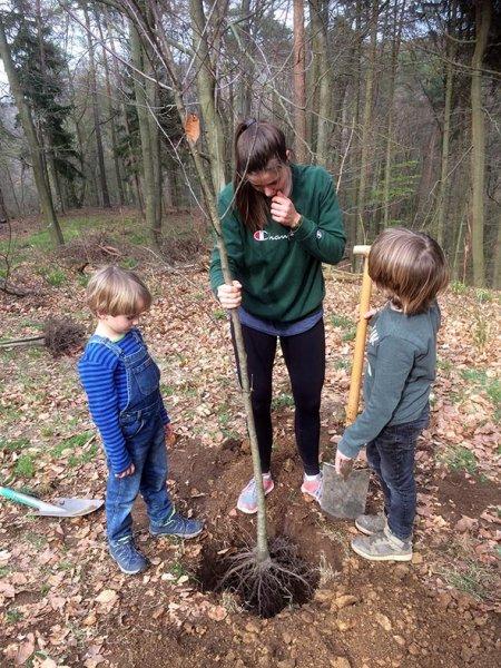 Einsatz Alsbacher Wald - Passt