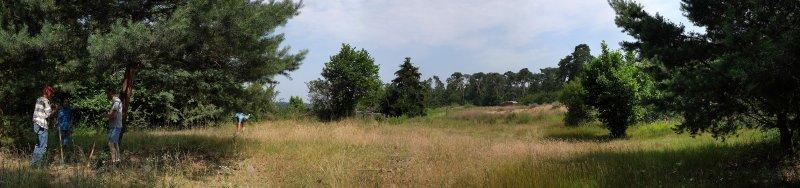 Panorama Dünenlandschaft