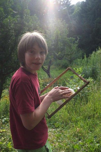 Honigschlecken Etzwiesen 1