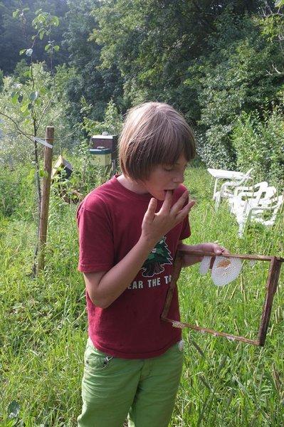 Honigschlecken Etzwiesen 2