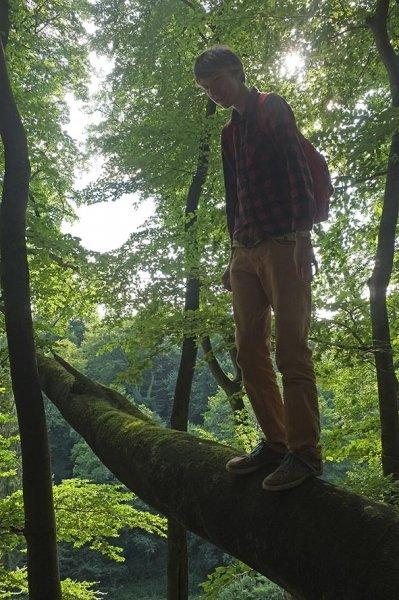 Wald über Etzwiesen 4