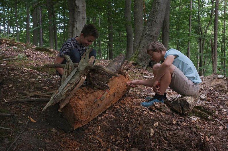 Waldwerkstatt über Etzwiesen 1