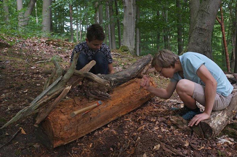 Waldwerkstatt über Etzwiesen 2