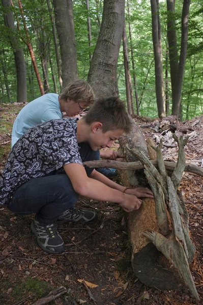 Waldwerkstatt über Etzwiesen 3