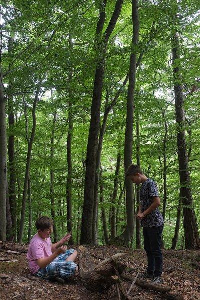 Waldwerkstatt über Etzwiesen 4