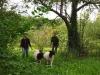 Schafgruppe 8
