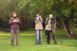 Hirschbrunft-Beobachter am Gut Mappen 1 small