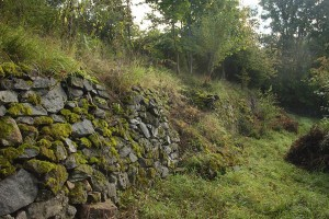 Foto: NABU/Tino Westphal - Trockenmauer in einem augelassenen Weinberg am Seeheimer Blütenhang