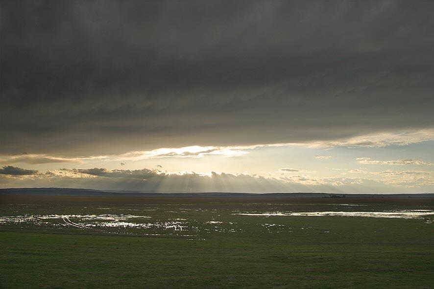 Panorama Neusiedler See