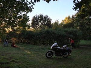 Foto: NABU/Tino Westphal - Einsatz auf dem neuen NABU Grundstück am Blütenhang.
