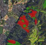 Mehr Flächenstilllegung im Staatswald