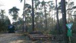 Holzlager im Naturschutzgebiet bei Seeheim aufgelöst