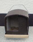 Falkenkasten am Schloßpark angebracht