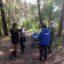 Vogelstimmen im Wald