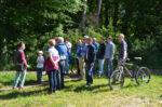 Botanische Exkursion im Seeheimer Wald