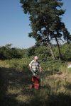 Einsatz auf der Götterbaumweide I