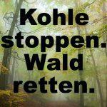 Demo am Sonntag: Waldspaziergang in den Hambacher Forst