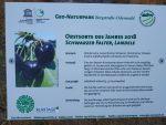 Geopark pflanzt Obstsorte des Jahres 2018