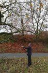 Obstbaumschnitt im Stettbacher Tal I
